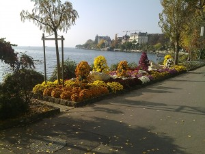 View of Lake Geneva in Montreux - Copyright Fennobiz Sàrl